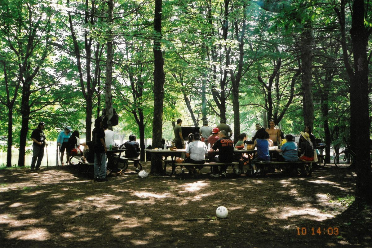 people-lunch-in-forest